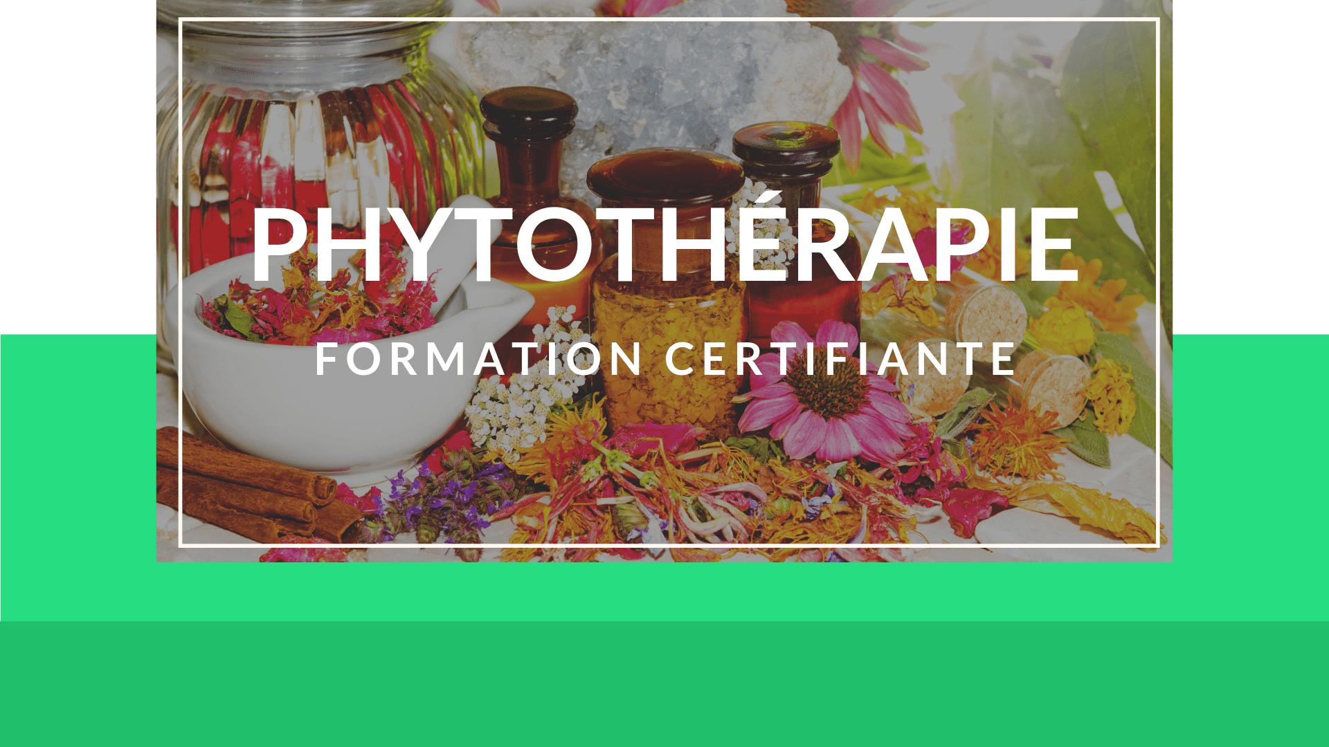 comment se former en phytothérapie