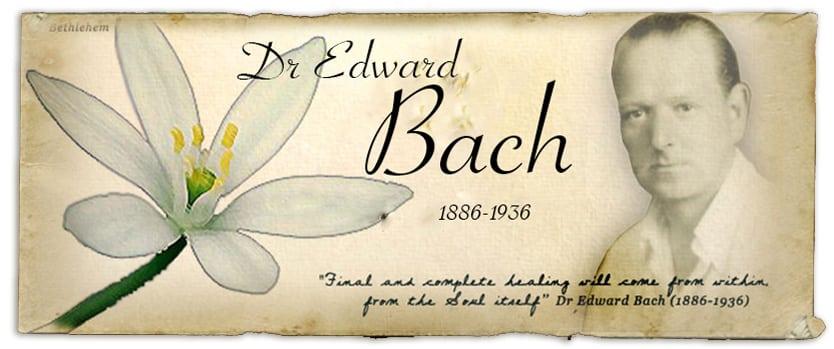 que soigne les fleurs de bach